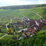 Blick auf Eschendorf - mit der Lage Escherndorfer Lump; eine der Spitzen-Steillagen in Franken