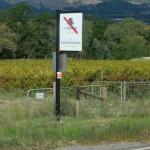 einnes der vielen verpassten Weingüter: D´Arenberg