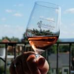 Rosé im Weingut Hoflößnitz