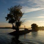 so schön kann es abends am Rhein sein