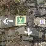 Rheingau zu Fuß - das macht Spaß