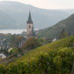 Lorch, ganz im Norden des Rheingaus
