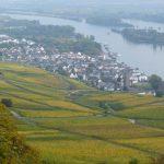 Blick auf Rüdesheim, ein scheinbar ruhiger Ort...